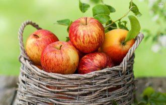 Prodotti ecosostenibili: Dalla lavorazione industriale delle mele nascono scarpe e fazzoletti