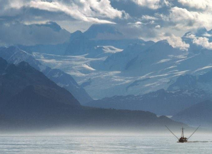 Compra il Salmone Selvaggio… Pam Panorama ti porta in Alaska