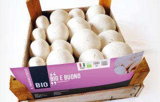 Il Fungo Bio di Hortoitalia al Sana 2014