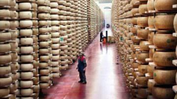 Guerre e guai dei paesi nostri: La guerra tra Ucraina e Russia si riflette anche sull' agricoltura italiana