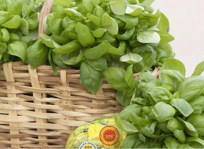 Pesto e Liguria, matrimonio virale
