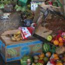 Arriva dalla Coldiretti Alessandria un intervento denuncia contro lo spreco alimentare