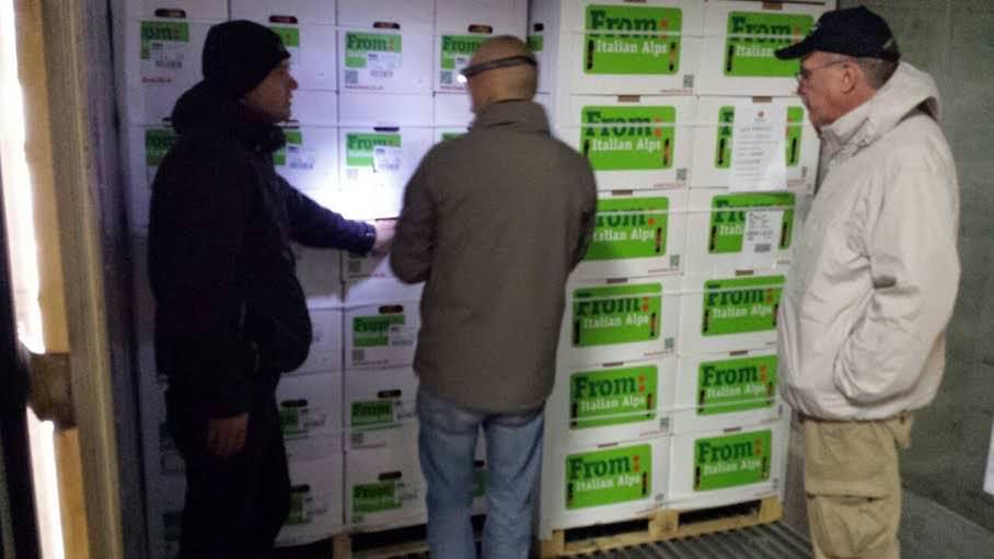 CSO: Partiti i primi container di mele verso gli USA
