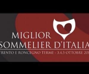 """Trento e Roncegno Terme, 3-4-5 ottobre: Concorso Miglior Sommelier d'Italia ASPI 2014 – Protagonisti e """"C'ero anch'io…"""""""
