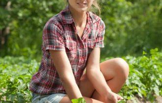 Agricoltura, è tempo di essere green: più bio, meno pesticidi ed erbicidi