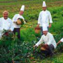 Orsara di Puglia, 19° Appuntamento con la Daunia: dall'orto dei miracoli al matrimonio indiano da mille e una notte