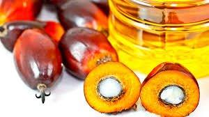 La battaglia contro l'olio di palma: un problema di salute ma anche etico
