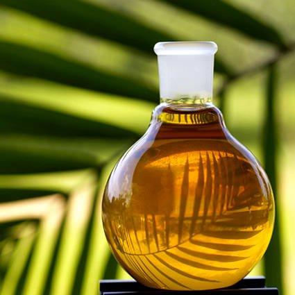 olio_di_palma_biocarburante_olio_di_palma_olio_friggere_olio_di_palma_indonesia_olio_di_palma_3