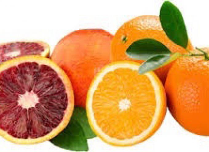 Arance Rosse di Sicilia, varietà Moro: buone, sicure e Super Biologiche – allegato certificato