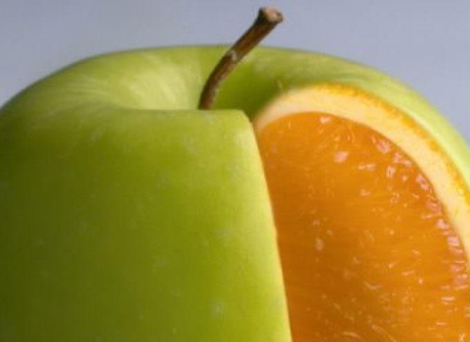 Per 8 Italiani su 10: deciso NO agli OGM – sondaggio Coldiretti