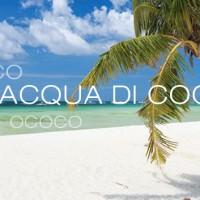 OCOCO – 100% acqua di cocco, si presenta a Biofach 2015 – Halle 4 Stand 763