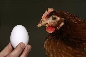 UnaItalia: Nel 2014 boom del pollo, e tutto il comparto registra produzione e consumi in ripresa