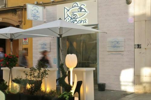 L'Ancora Store - Torino
