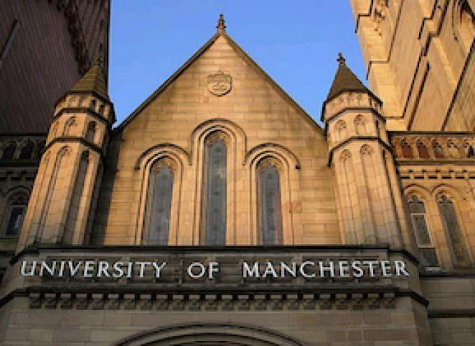 Controllo presenza accidentale di allergeni alimentari by University of Manchester
