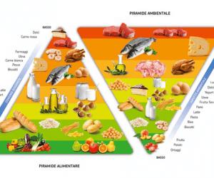 Ambiente: Il Barilla Center for Food and Nutrition ha ideato il modello della Doppia Piramide Alimentare – Ambientale