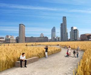 Milano: sabato si semina il grano in città…  mietitura a luglio, Expo 2015