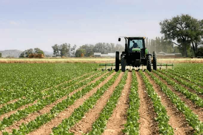 Ministero Politiche Agricole Alimentari e forestali: provvedimento legislativo che affida alla agricoltura una funzione sociale di riferimento