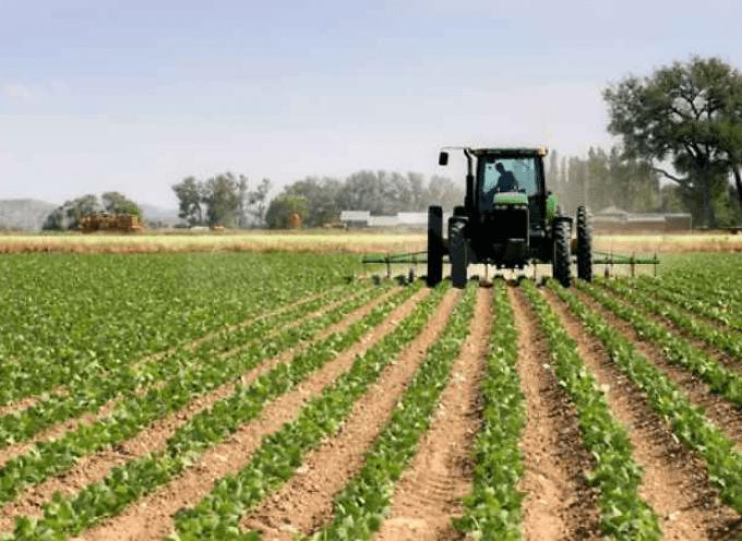"""""""Ottimizzare l'uso dei fertilizzanti"""". La Regione Piemonte cambia l'agricoltura"""
