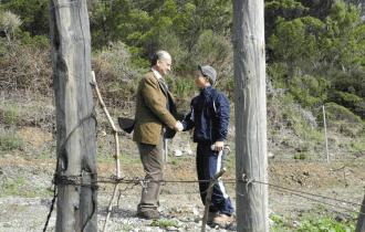 Vino, Frescobaldi a Gorgona: Raddoppia il vigneto curato dai detenuti