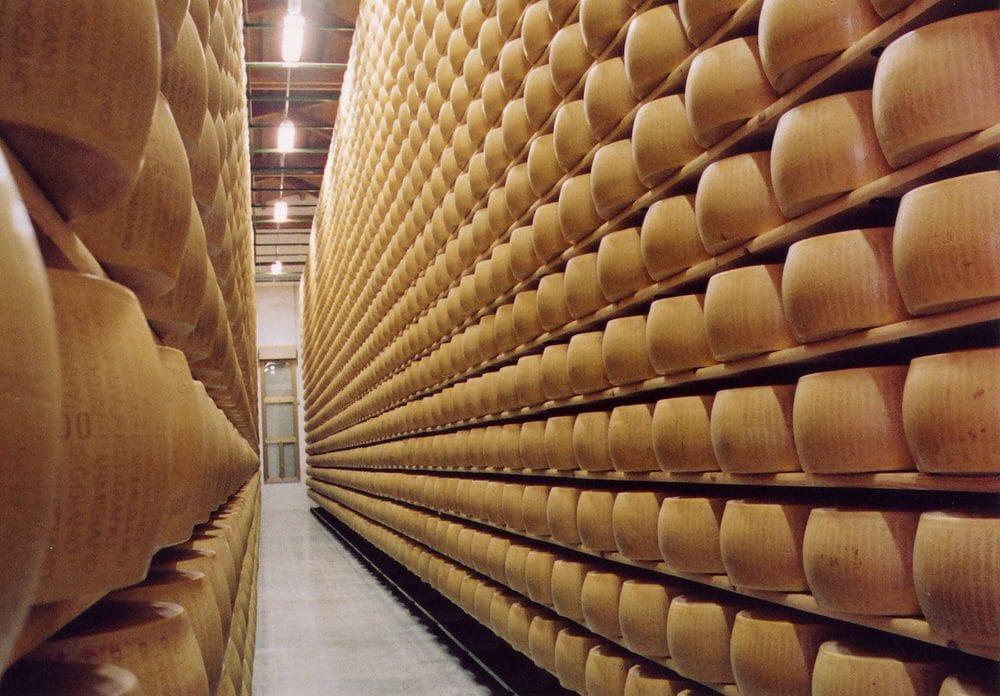 (31/3/2015 Nuova Castelli risponde) :::Frode Parmigiano Reggiano e Grana Padano:  intervista a Dario Dongo, avvocato esperto di diritto alimentare