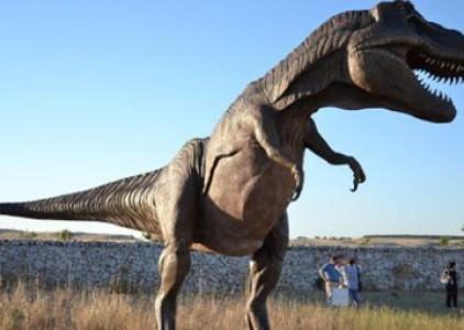Altamura: Cemento invece di un jurassic park sulle vere orme dei dinosauri?