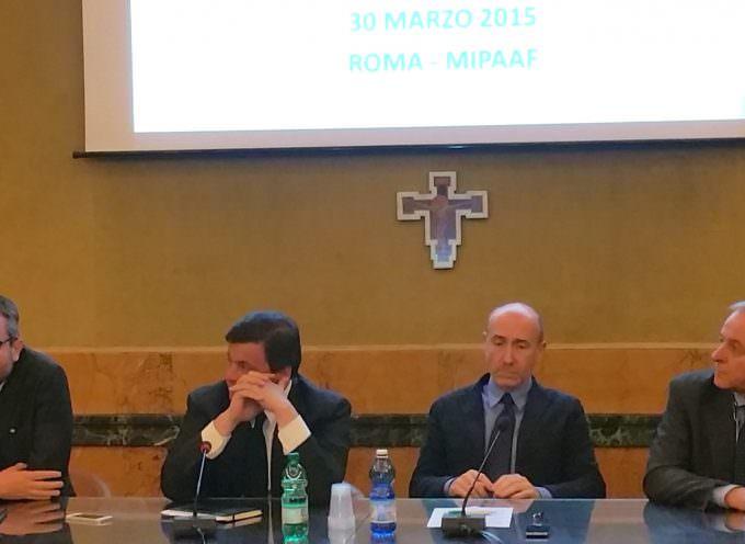 Consorzio Igp Pachino entra nel direttivo AICIG