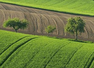 Coldiretti Lombardia: Aumentano le innovazioni green
