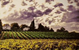 Azienda agricola Collina dei Poeti: Un luogo unico dove storia, poesia e tradizioni contadine sono ben radicate