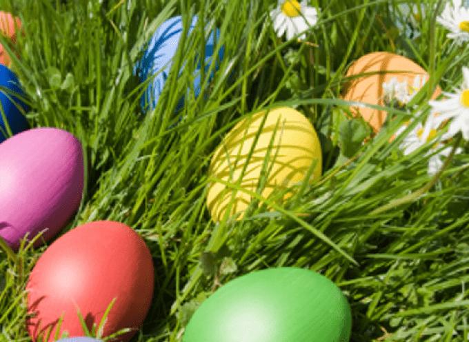 Pasqua: 300mila italiani scelgono l'agriturismo