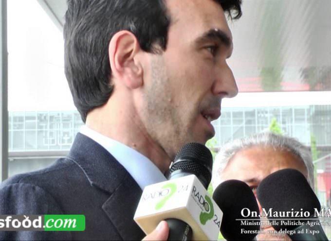 Maurizio Martina a Tuttofood 2015 (Video)… a tuttoExpo… avanti tutta!!
