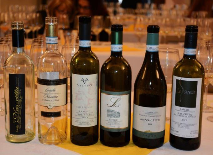 Nas-cëtta Novello Doc (Nas-Cetta… Nascetta) è il Vino  Autoctono Albese