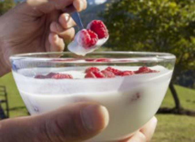Dal 5 Luglio al 2 Agosto Vipiteno ospita le Giornate dello Yogurt
