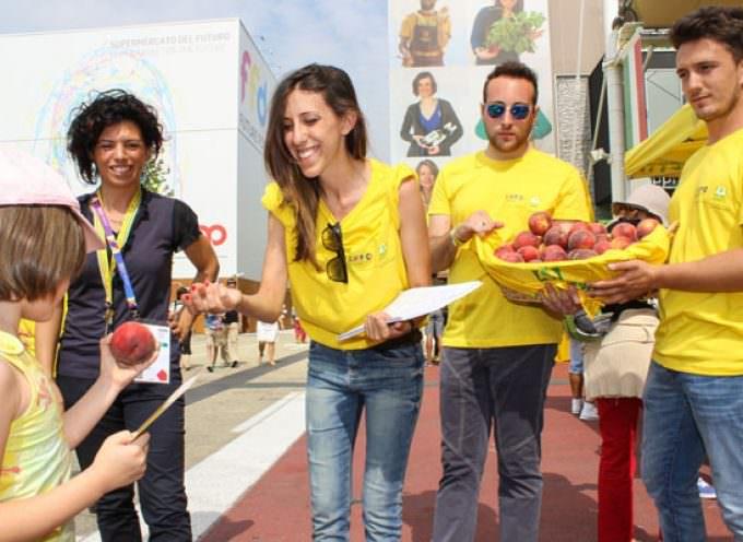 Caldo infernale: La Coldiretti distribuisce frutta fresca italiana di stagione