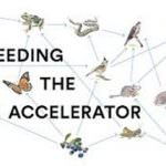 Feeding the Accelerator: Ecco  i 10 team selezionati per far parte dell'incubatore di start up