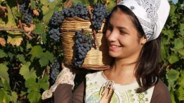 Enologic Taurasi 2015: Fiera del Vino e Sagra enogastronomica