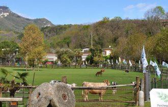 L'Expo può essere un'occasione per riscoprire Varese