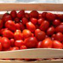 Cremona e Piacenza: Nasce il colosso italiano del pomodoro