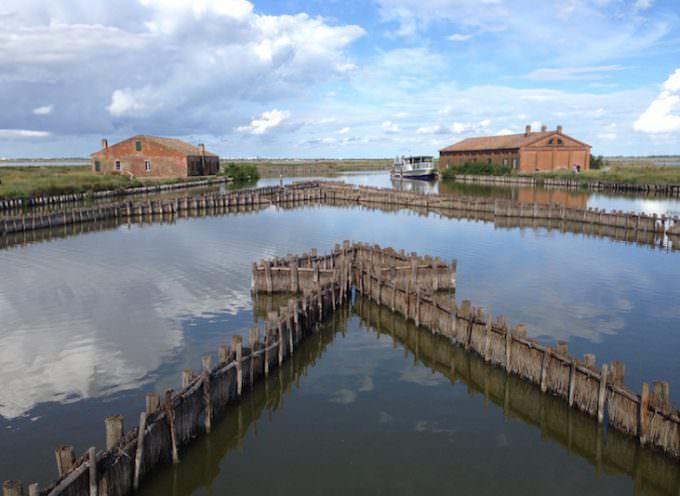 Dopo Expo: puntare sul Po, sul nuovo turismo fluviale