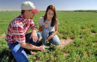 Agricoltura, la salvezza viene dai giovani