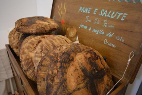 Pane di Orsara di Puglia cotto nel forno a paglia di Angelo Trilussa