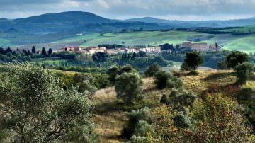 San Giovanni D'Asso: Tartufi e tartufai delle Crete Senesi
