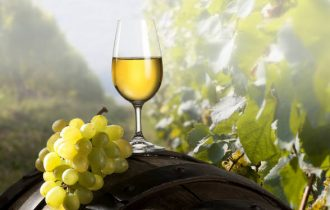 Buon Vino fa Buon Sangue… meglio il Vino rosso o il Vino Bianco?