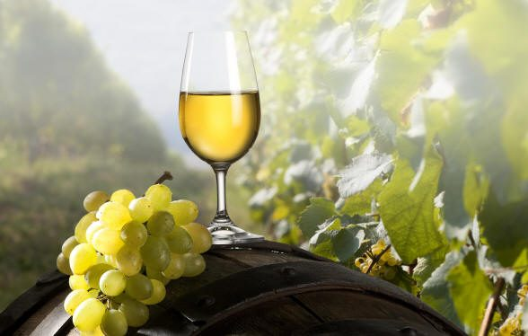 The Global Pinot Grigio Masters, vittoria per Perlage