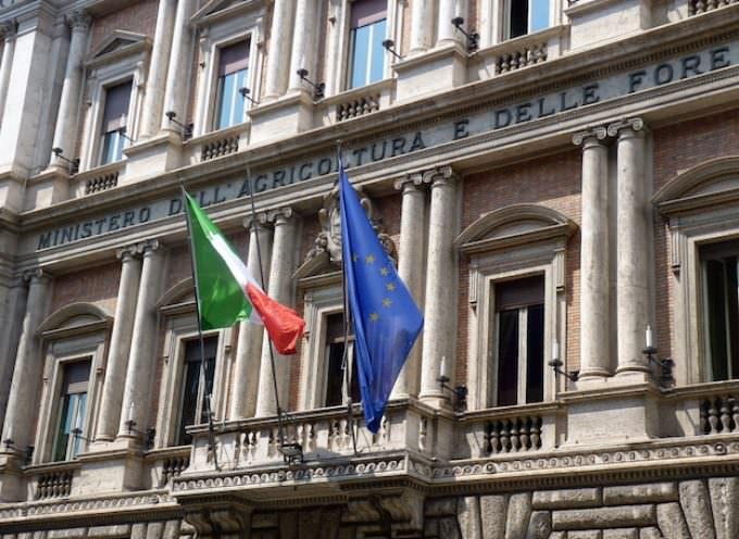 Nuovo Ministero dell'Agroalimentare: lettera aperta a Matteo Renzi by Giampietro Comolli