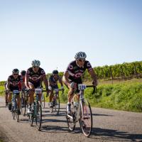 Giro d'Italia 2016: il Gallo Nero, Chianti Classico in Maglia Rosa