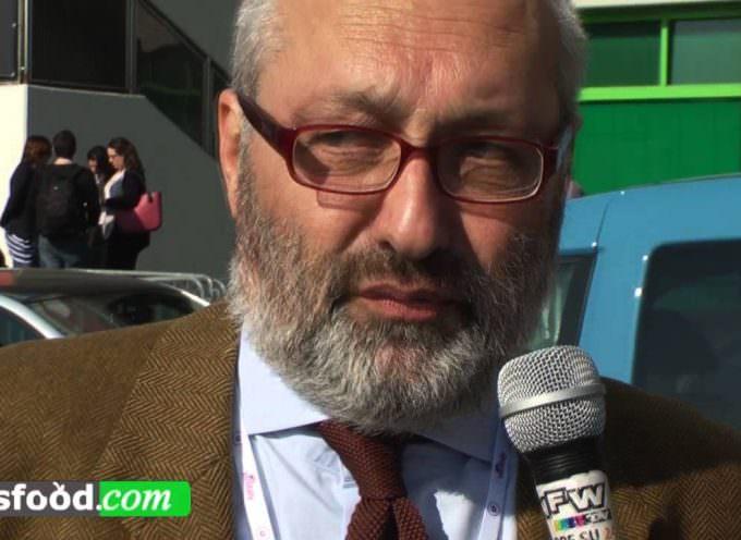 Prima giornata 50° Vinitaly 2016: Comolli e il futuro del vino (Video)
