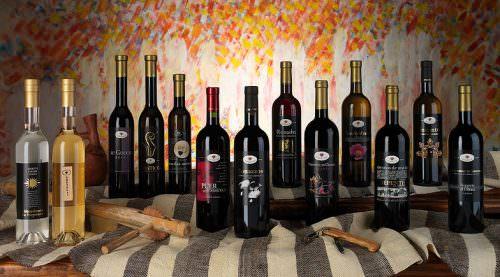 Grande Festa del Vino - Bosa