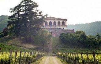 Nasce il Distretto Agroalimentare del Vino Biologico, a Este, Colli Euganei