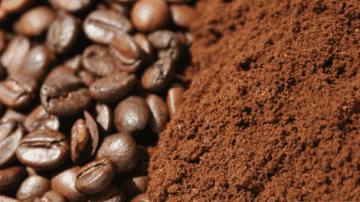 Quanta salute ci sta in un chicco di caffè?