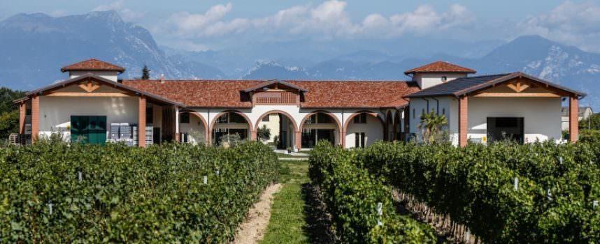 Sul Garda in cantina a Le Morette Lugana – intervista a Fabio Zenato